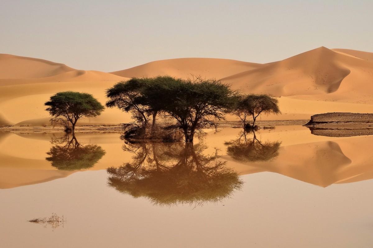 Zdjęcia: Tadrart, Sahara, Niezapomniany czar Sahary, ALGIERIA