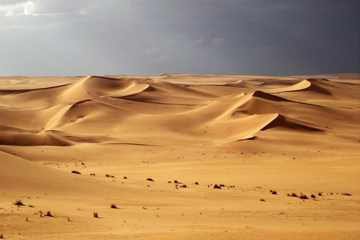 Zdjęcia: Tin Merzouga, Sahara, 9  dni w  siódmym niebie: po burzy, ALGIERIA