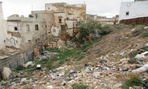 Zdjęcie ALGIERIA / Algier / Algier / To też Algier