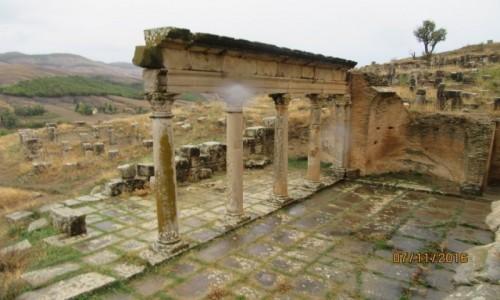 Zdjęcie ALGIERIA / Algieria / Algieria / Dżamila - Ruiny rzymskie