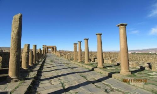 Zdjęcie ALGIERIA / Timgad / Timgad / Algieria - Rzymskie ruiny