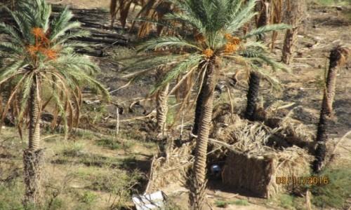 Zdjęcie ALGIERIA / Algieria / Algieria / Algieria - Kanion Rhoufi