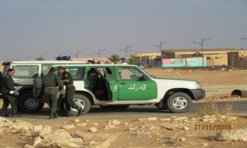 Zdjęcie ALGIERIA / Ouargia / Ouargia / Algieria