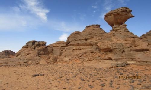 Zdjecie ALGIERIA / Sahara / Sahara / Algieria  -  Sa