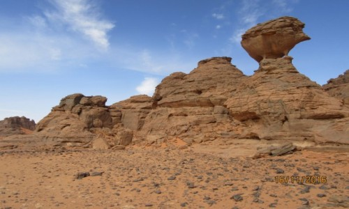 Zdjecie ALGIERIA / Sahara / Sahara / Algieria  -  Sahara