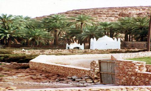 Zdjęcie ALGIERIA / algieria zachodnia / moghar koło becharu / dwa marabuty w drodze na pustynie