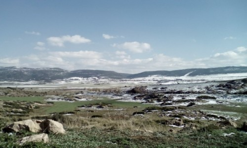Zdjęcie ALGIERIA / Tlemcen / tlemcen / krajobraz