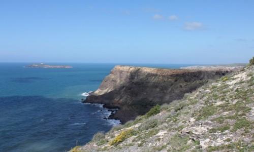 Zdjęcie ALGIERIA / Tlemcen / olhaca / krajobraz