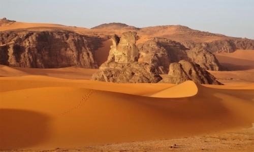 ALGIERIA / Sahara / Tadrart / 9 dni w 7 niebie: Muzyczna podróż z Tuaregami