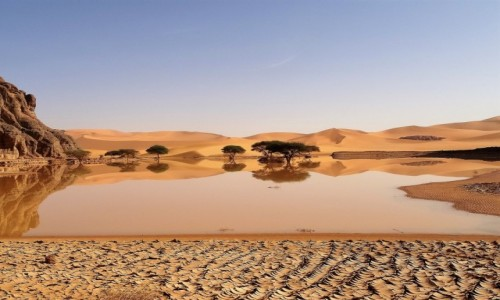 Zdjecie ALGIERIA / Sahara / Tadrart / 9 dni w 7 niebie: Popadało!