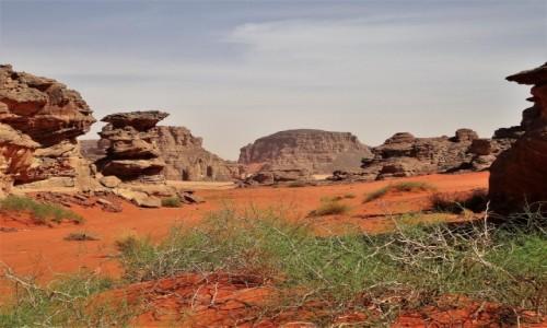 Zdjecie ALGIERIA / Sahara / Tadrart / 9 dni w 7 niebie: I skały, i piach