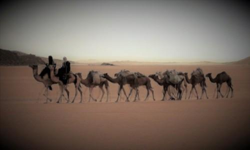 Zdjecie ALGIERIA / Sahara / Tadrart / 9 dni w 7 niebie: Ile nóg ma wielbłąd?