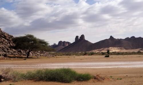 Zdjecie ALGIERIA / Sahara / Tikoubene / 9 dni w 7 niebie: Ta rzeczka spłynęła z gór na naszych oczach