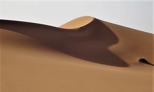 Zdjecie ALGIERIA / Sahara / Tin Merzouga / 9 dni w 7 niebie: Światło i cień