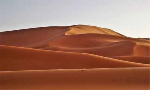 ALGIERIA / Sahara / Tin Merzouga / Zatęskniłam za Saharą...