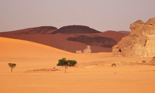Zdjęcie ALGIERIA / Sahara / Tadrart / 9 dni w 7 niebie: Odcienie pustyni