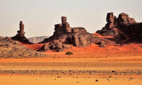 ALGIERIA / Sahara / Tadrart / 9 dni w 7 niebie