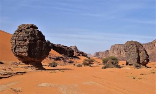 Zdjecie ALGIERIA / Sahara / Tadrart / 9 dni w 7 niebie
