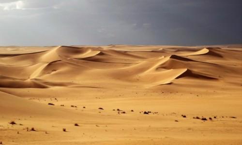 ALGIERIA / Sahara / Tin Merzouga / 9  dni w  siódmym niebie: po burzy
