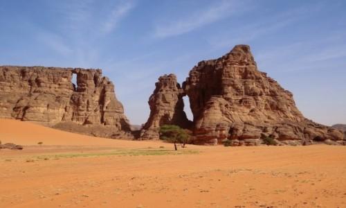 ALGIERIA / Sahara / Tadrart / 9 dni w siódmym niebie