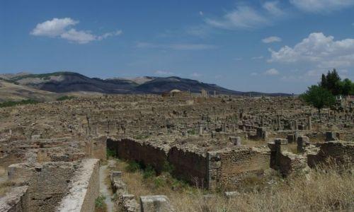 ALGIERIA / - / Djemila / Ruiny miasta rzymskiego