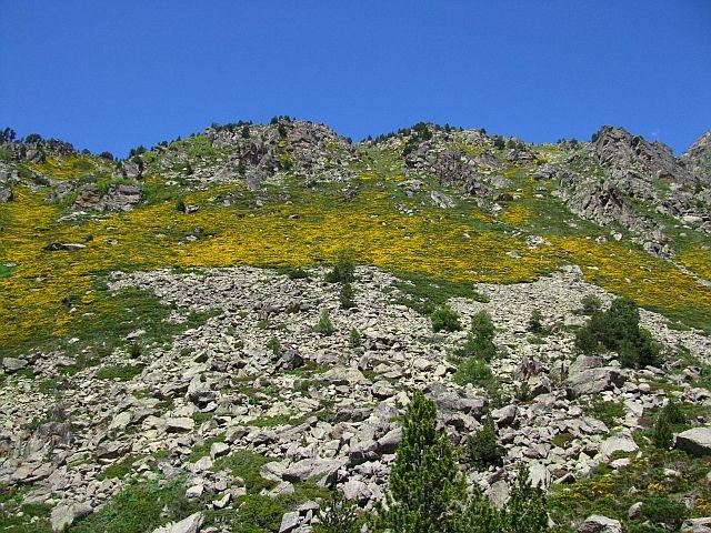 Zdjęcia: dolina de Juclar, Pireneje, dolina de Juclar, ANDORA