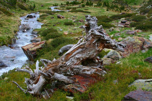 Zdjęcia: Pireneje, Pireneje, GR11 Pireneje, ANDORA