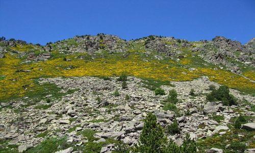 Zdjecie ANDORA / Pireneje / dolina de Juclar / dolina de Juclar