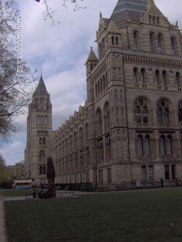 Zdjęcia: LONDYN, Londyn, Muzeum Naturalne Ziemi, ANGLIA