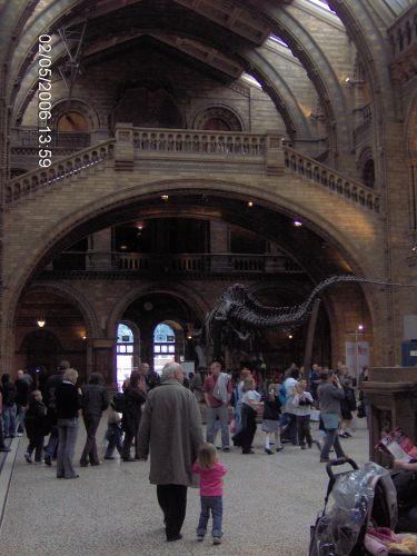 Zdjęcia: LONDYN, Londyn, Muzeum Naturalne Ziemi 3, ANGLIA