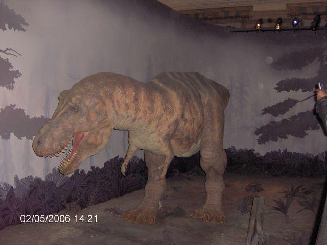Zdjęcia: LONDYN, Londyn, Muzeum Naturalne Ziemi 4 , ANGLIA