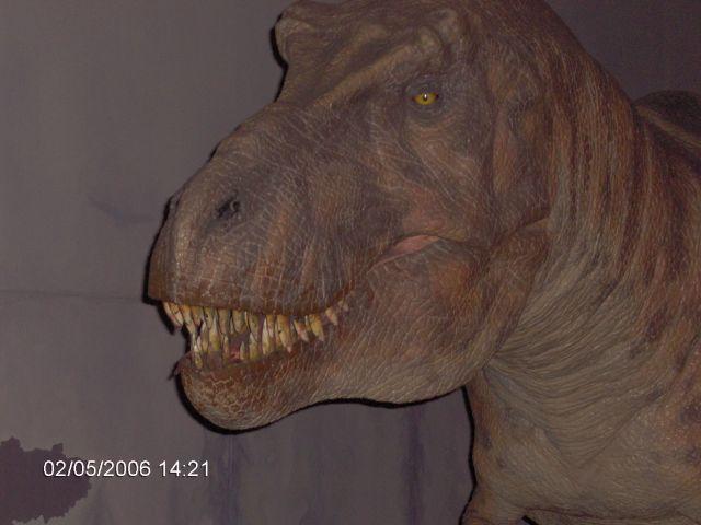 Zdjęcia: LONDYN, Londyn, Muzeum Naturalne Ziemi  5, ANGLIA