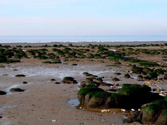Zdjęcia: Hunstanton, North Norfolk, Morze Północne w czasie odpływu, ANGLIA