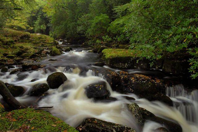 Zdjęcia: Avon Dam, Dartmoor, Strumien, ANGLIA