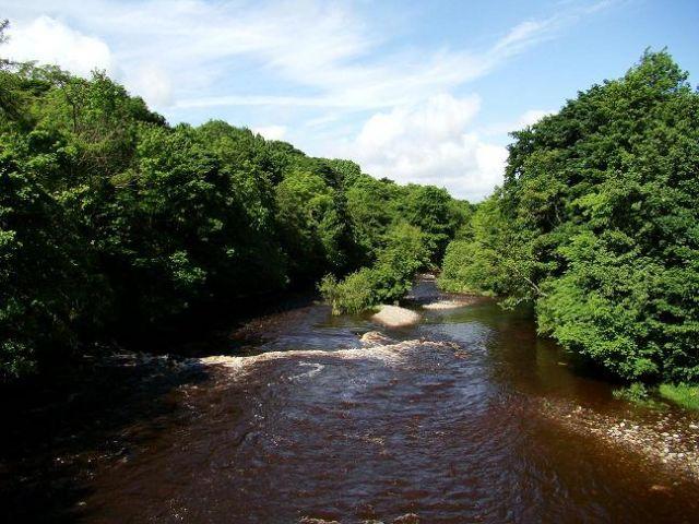 Zdjęcia: Wolsingham, Weardale, river Wear, ANGLIA