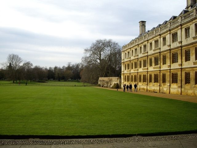 Zdjęcia: Cambridge, Anglia, Angielskie trawniki, ANGLIA