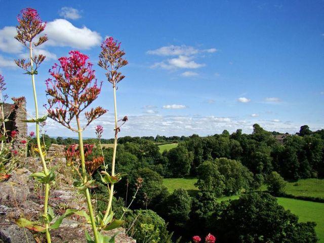 Zdjęcia: Richmond , North Yorkshire, takie widoki mieli dawni rycerze (Richmond Castle ), ANGLIA