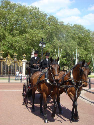 Zdjęcia: Buckingham Palace, Londyn, Karoca, ANGLIA