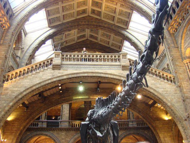 Zdjęcia: South Kensinghton, Londyn, Dino, ANGLIA