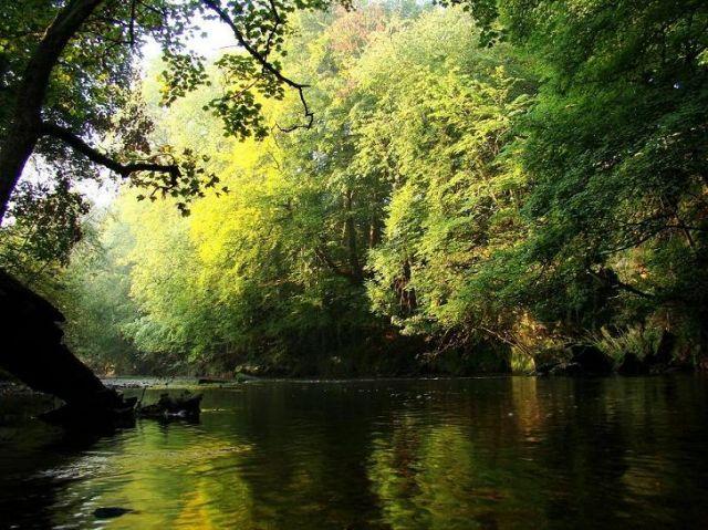 Zdjęcia: Knaresborough, North Yorkshire, nad rzeka rowniez jesien, ANGLIA