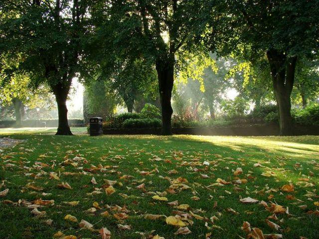 Zdjęcia: Knaresborough, North Yorkshire,  jesienny  poranek w  parku, ANGLIA