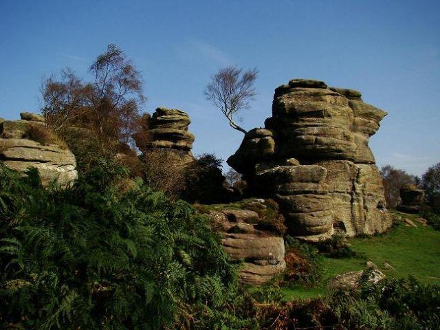 Zdjęcia: Brimham Rocks, North Yorkshire, park rzezb skalnych jesienia, ANGLIA