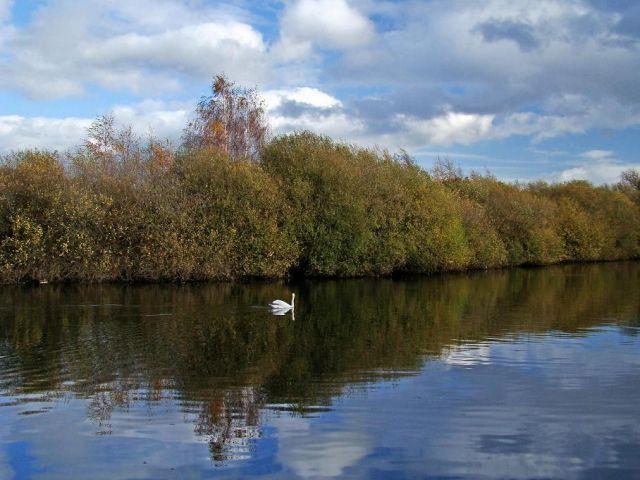 Zdjęcia: okolice Normanton, West Yorkshire, samotny bialy jegomosc, ANGLIA