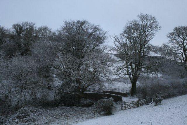 Zdjęcia: Dartmouth, Devon, śnieg w Dartmouth, ANGLIA