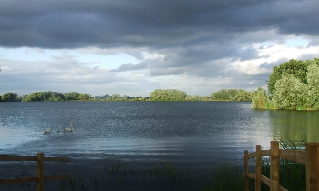 Zdjęcia: Fen Drayton Lakes, Cambridgeshire, Fen Drayton Lake 5, ANGLIA