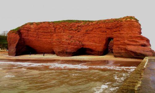 Zdjecie ANGLIA / Południowy Devon / Langstone Rock / Hipcio