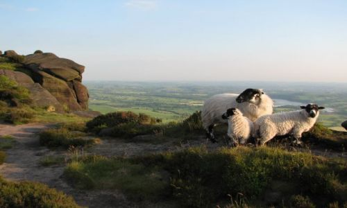 Zdjecie ANGLIA / Peak District / The Roaches / Roaches po raz 2