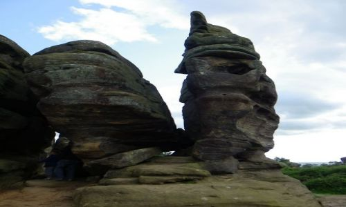 Zdjecie ANGLIA / North Yorkshire, England / Brimham Rocsks / Brimham Rocsks