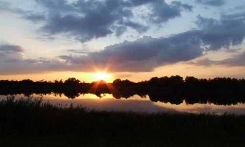 Zdjęcie ANGLIA / Cambridgeshire / Fen Drayton Lakes / Fen Drayton Lakes 6