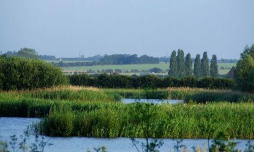 Zdjecie ANGLIA / Cambridgeshire / Fen Drayton Lakes / Fen Drayton Lake 2